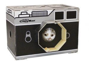 cat night vision camera